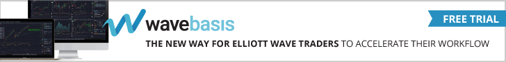 WaveBasis, WaveBasis Review
